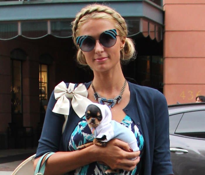 Paris Hilton Totes Mint Trimmed Straw Bag And Pet Chihuahua