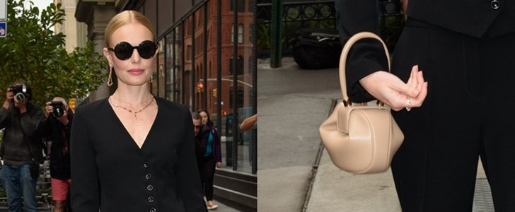 Kate Bosworth Totes Highly Coveted Gabriela Hearst 'Demi' Bag